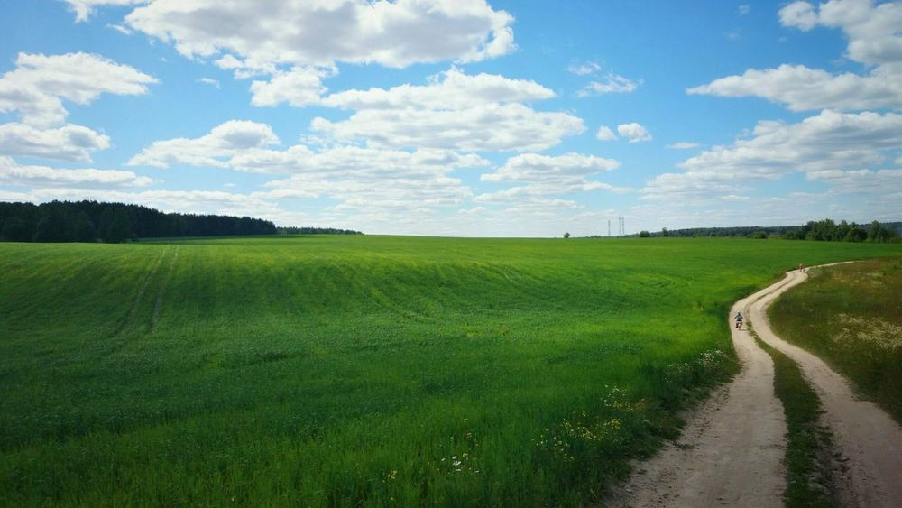 Summer Nature On Your Doorstep Nature Holiday POV Capturing Freedom Field природароссии Melancholic Landscapes Greenery