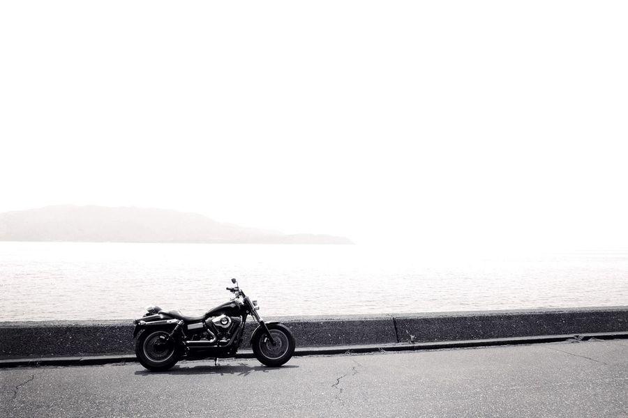 B&W Portrait Harleydavidson Motorcycle Photography Bmw Motorcycle Blackandwhite Photography Bw_lovers Motorcycles EyeEm Gallery Black & White Bw_shotz