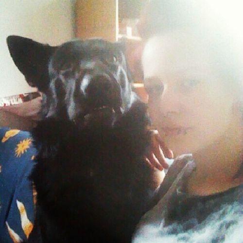 Darf ich vorstellen, mr. Baxter. <3 Sch äferhund Hund Bundeswehr Zucht Tierschutz Liebe