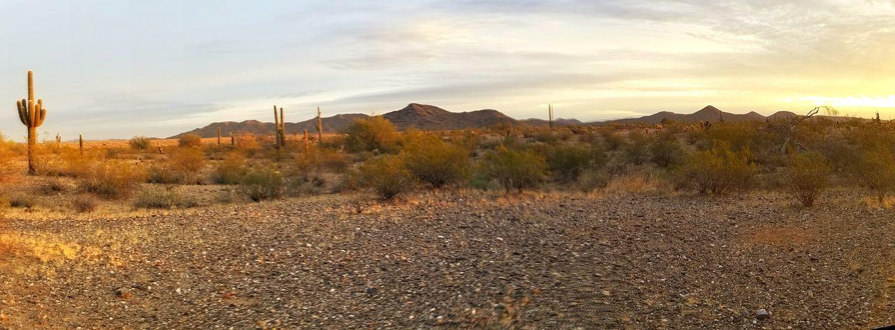 Sonoran Desert Sunrise Arizona Spring Desert Colorful Golden Golden Hour Sonoran Desert Sunrise Dawn Painted Sky Landscape EyeEm Selects Sky Landscape Panoramic Mountain Range Mountain Non-urban Scene Scenics Valley Tranquil Scene Arid