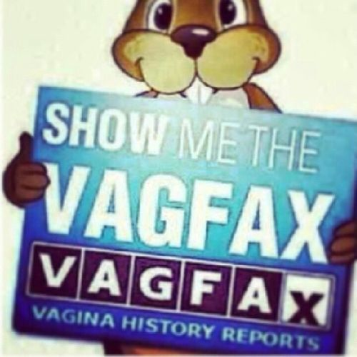 Repost SHOWMETHEVAGFAX if she can't count the number of people she slept with Sheahoe