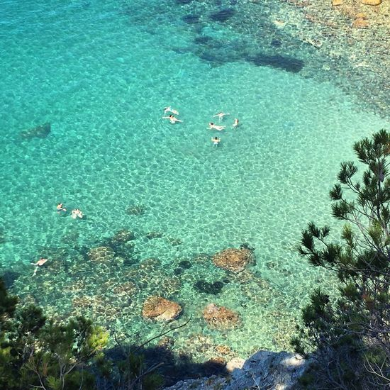 Trosset de paradís Sea Underwater Nature UnderSea Water Beauty In Nature Sea Life Beach Swimming Summer Paradise Costa Brava Mediterranean