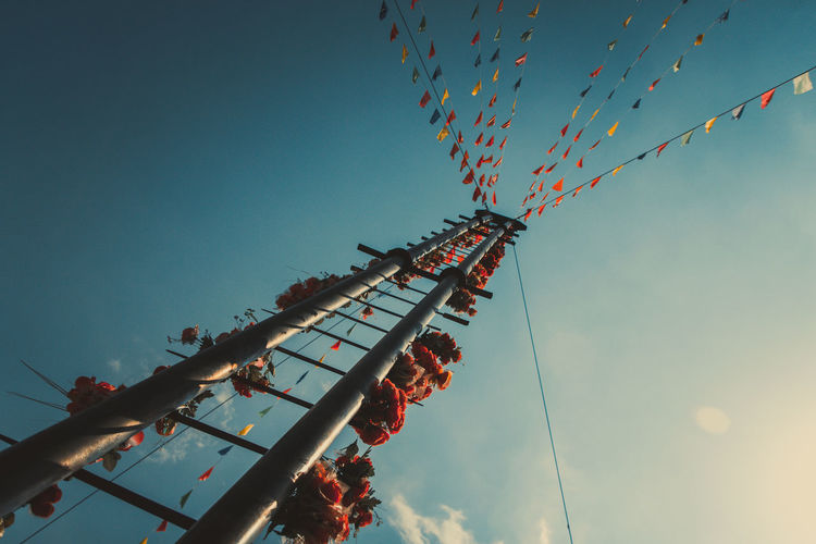 Low Angle View Of Flowers Hanging On Pole Against Blue Sky During Sunny Day