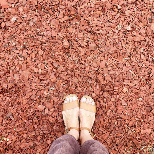 Low section of person standing on dry leaves