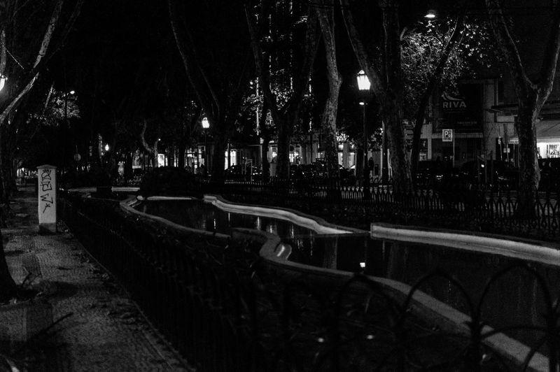 Night City Tree