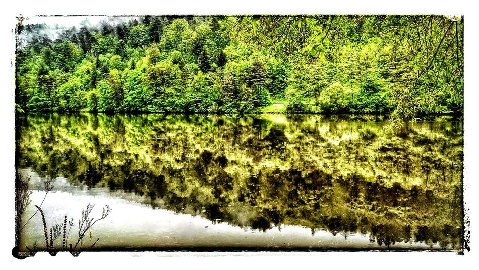 Adickes Main River Hello World Enjoying Life Traveling Seeing The Sights Reflected Glory The Great Outdoors With Adobe