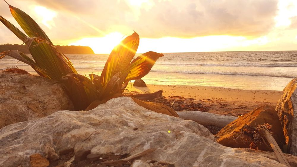 PhonePhotography Sunrise Caribbean Trinidad And Tobago Mayaro Sea Beach Sunlight Sand Sun Sky Cloud - Sky