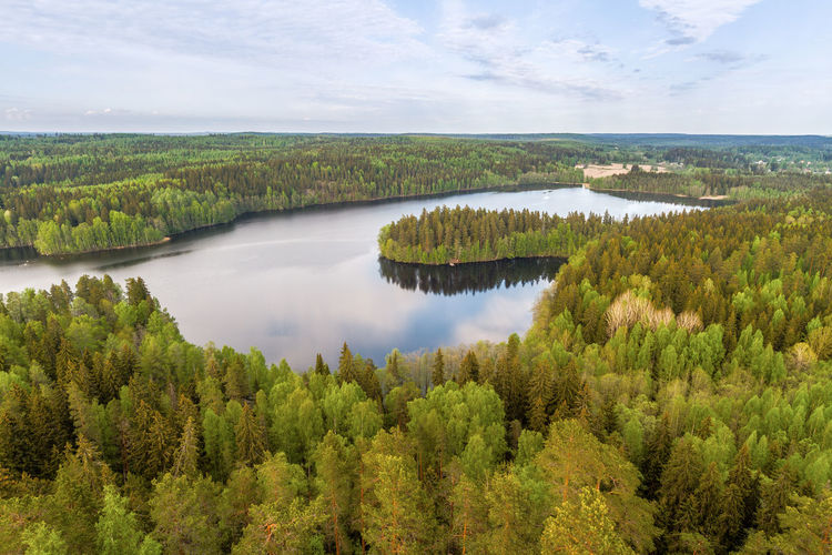 Peaceful landscape with lake view at Aulanko nature park in Finland Aerial View Aulanko Beauty In Nature Cloud - Sky Day Finland Forest Freshness Lake Lake View Lake Views Lakescape Landscape Nature No People Outdoors Reflection Scenery Scenics Sky Still Water Summer Summer Views Water