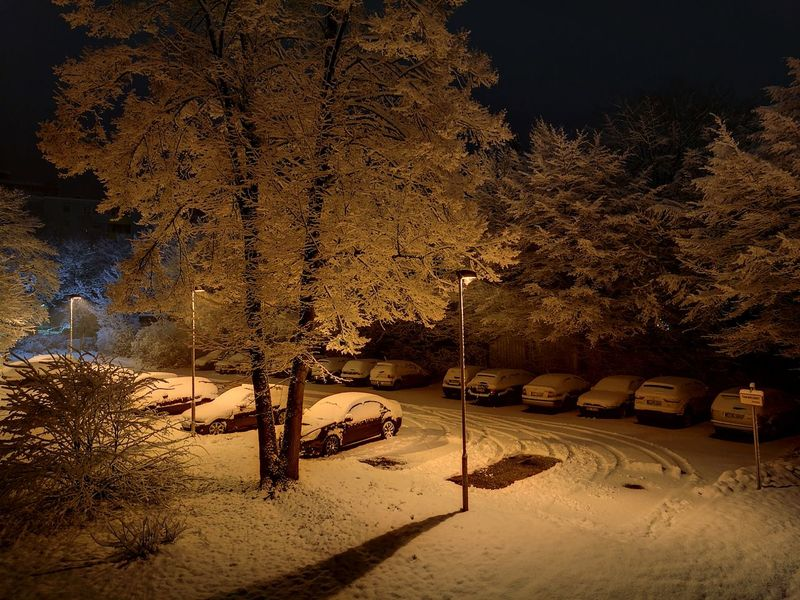 Winter In Deutschland зима 2017 Deutschland Ist Schön Schnee Schneefall Nachtaufnahme Nightphotography Huaweiphotography Huawei P9 Leica HuaweiP9Photography HuaweiP9 Huawei Photography Huawei P9 Plus HuaweiP9plus Huawei P9 Photos Huawei Shots Huaweip9photos снег❄ снег зима❄️ зима ночная съемка ночная тема Outdoors No People Night Tree Nature Sky HUAWEI Photo Award: After Dark