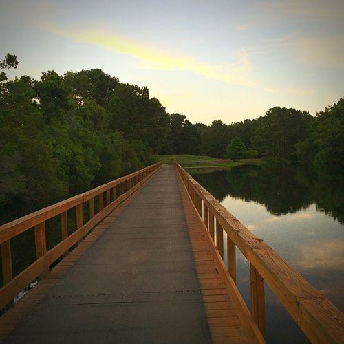 Evening Walk Enjoying Life