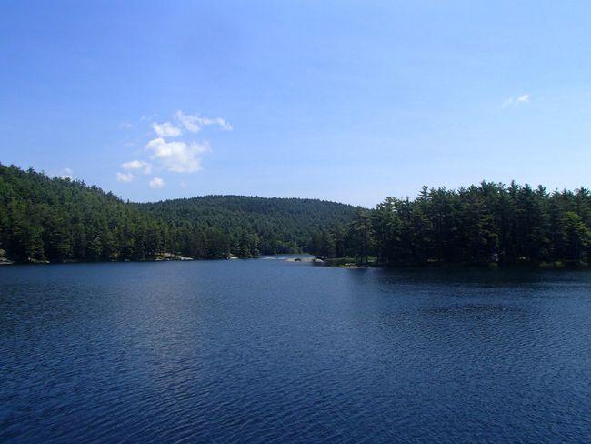 Rock Pond (Adirondack State Park) Adirondacks Sky Tree Plant Water Tranquility Tranquil Scene Cloud - Sky Scenics - Nature Beauty In Nature Lake Rippled Idyllic Outdoors