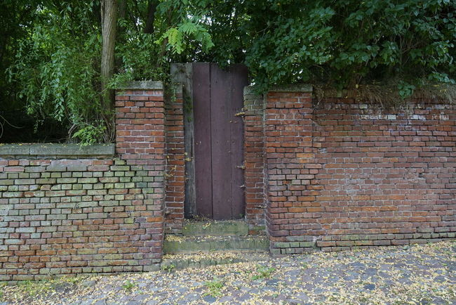 Architecture Brick Wall Building Exterior Built Structure Day Door No People Outdoors Tree