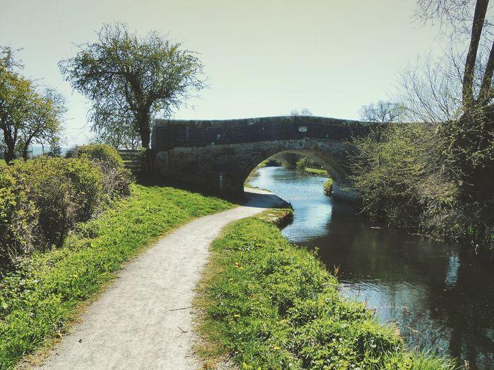 Footpath leading to stream