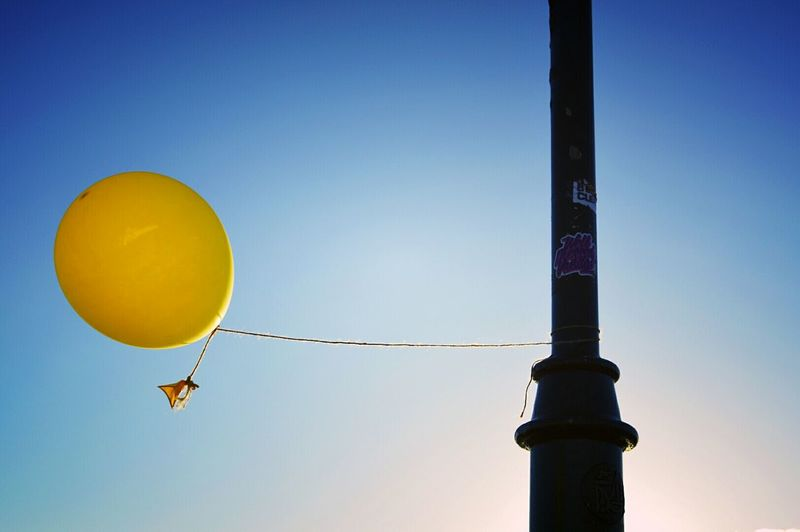 Yellow balloon. Advertising Advertisement Yellow Balloon Balloons🎈 Air Tied Pole Streetlight Sky Blue Sky Escape Entertainment Mid-air Ballooning Festival Helium Levitation Inflating Zero Gravity Power Energetic Runaway Spread Wings A New Perspective On Life Capture Tomorrow Moments Of Happiness