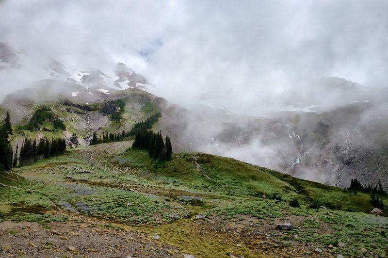 IPSScenery Mount Rainer National Park Hiking Nature Mist IPSWeather IPS2016Landscape