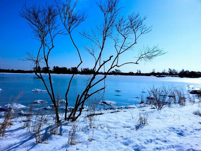 Weekapaug Cove Westerly Rhode Island Snow Day Nature Nature Landscape_photography coastline Escaping Beach Nice Views