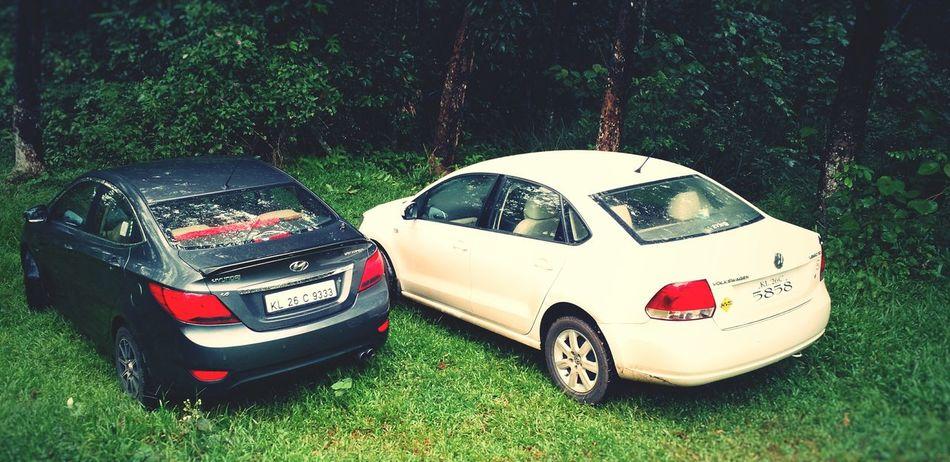 Cars Forest In The Forest Nature EyeEm Nature Lover EyeEm Best Shots - Nature Hyundai Volkswagen Vento Verna