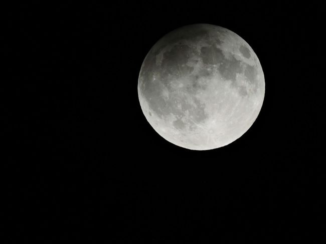 Moon Astronomy Night Beauty In Nature Scenics Planetary Moon Full Moon Tranquil Scene Low Angle View Copy Space Majestic Clear Sky Dark Tranquility Circle Nature Discovery Moon Surface Exploration Sphere Harvestmoon