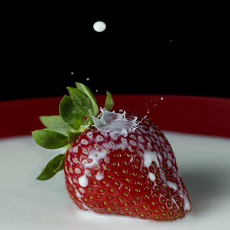 Fruit Fresa Strawberry Milk Leche Gota De Leche Gota Drop Splash Splashing Droplet Fruit Food Red Healthy Eating Freshness No People Close-up Indoors  Studio Shot Black Background Ready-to-eat