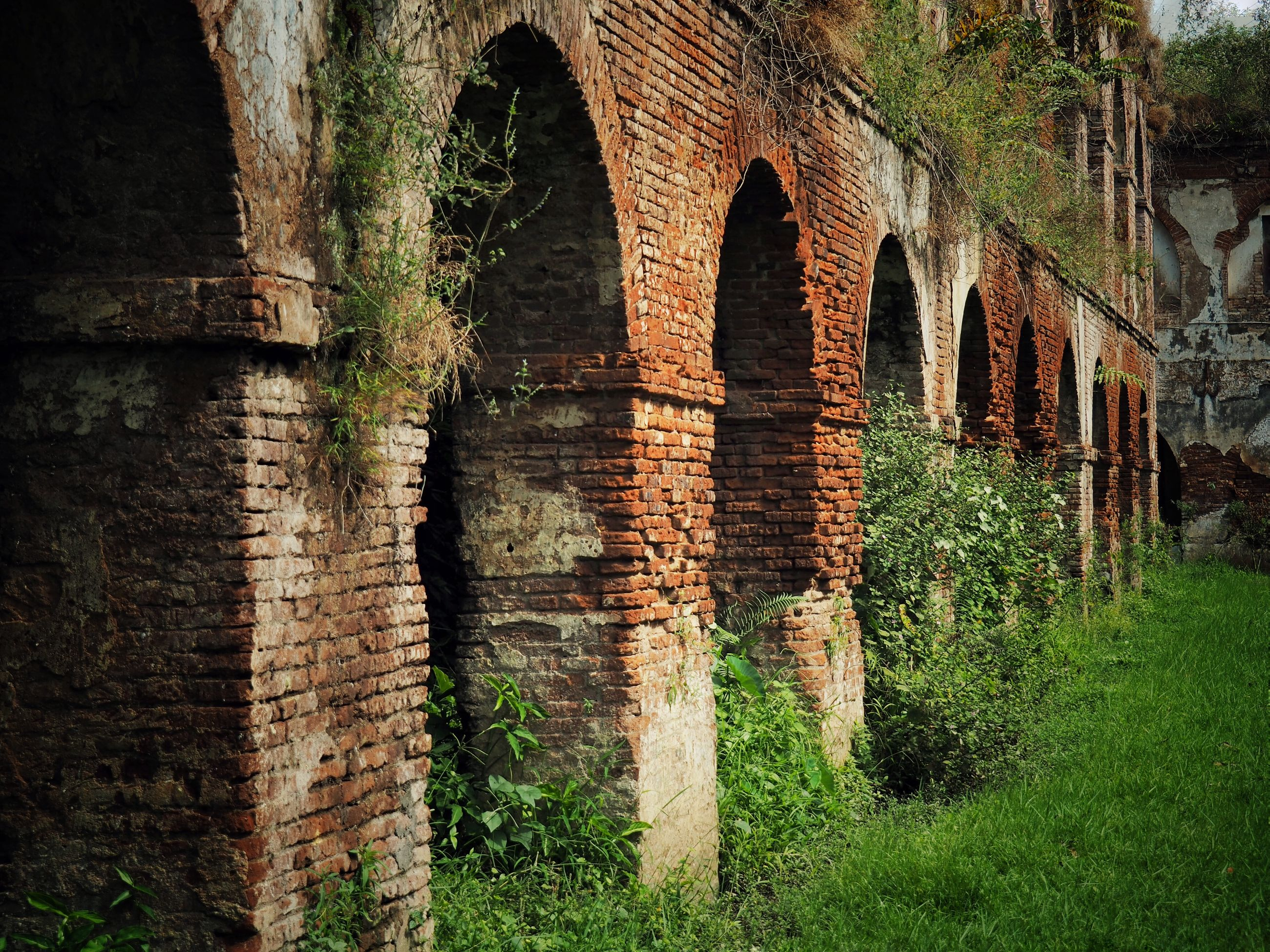 architecture, built structure, grass, old, history, arch, the past, plant, green color, growth, brick wall, day, outdoors, no people, nature, ancient, deterioration, run-down, grassy, tranquility, historic, exterior