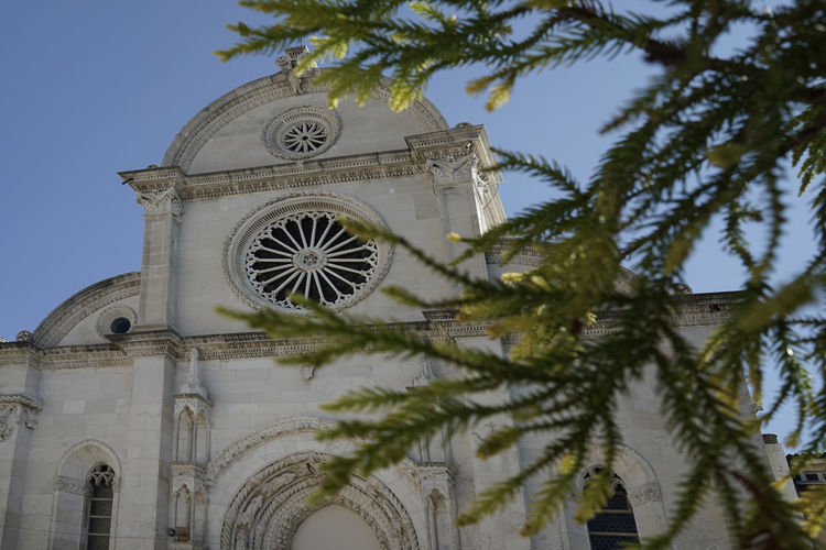 Architecture_collection Cathedral Croatia Plant St. Jacob's Cathedral Tree Architecture Bildfolge Building Exterior Built Structure Day Jacob Low Angle View No People Outdoors Photography Religion Rose Window Sibenik Sky Spirituality Tree