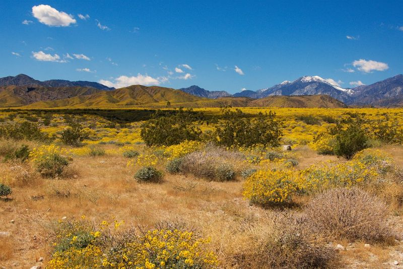 Deserts Around The World EyeEm Best Shots Mountain Range Beauty In Nature Landscape Outdoors EyeEm Cloudporn
