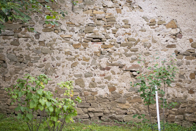 View of stone wall