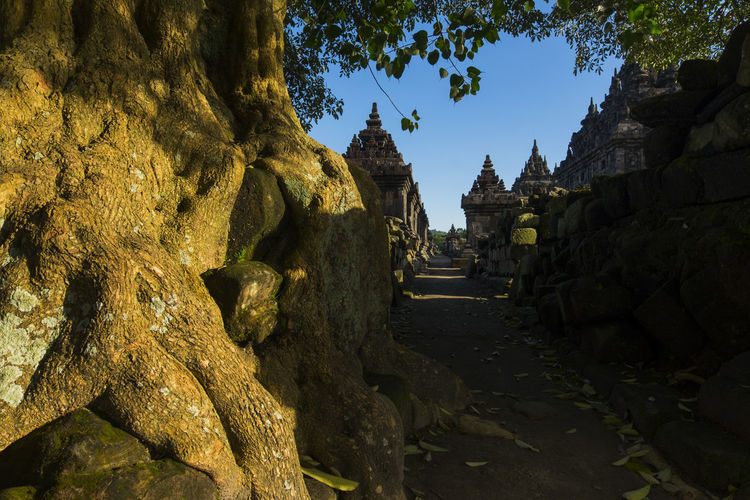 Plaosan temple