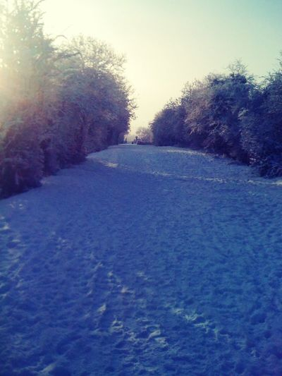 Poyntzpass Tow Path