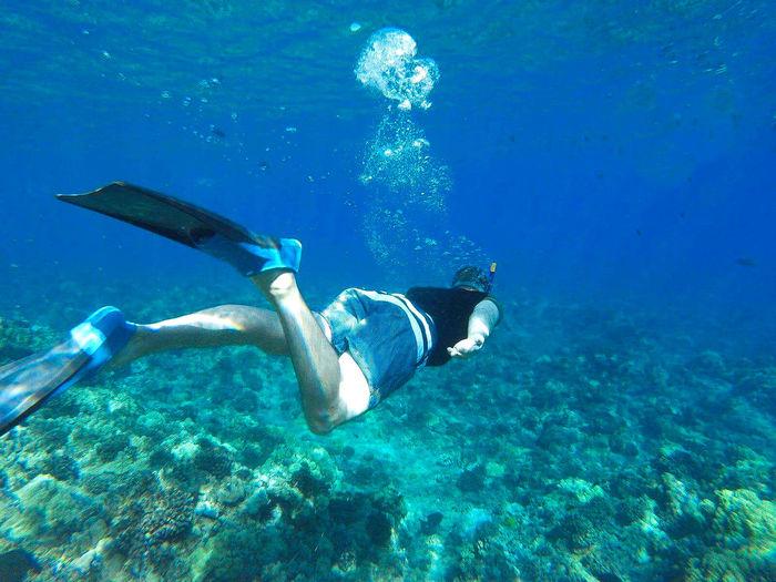 Rear view of man snorkeling in sea