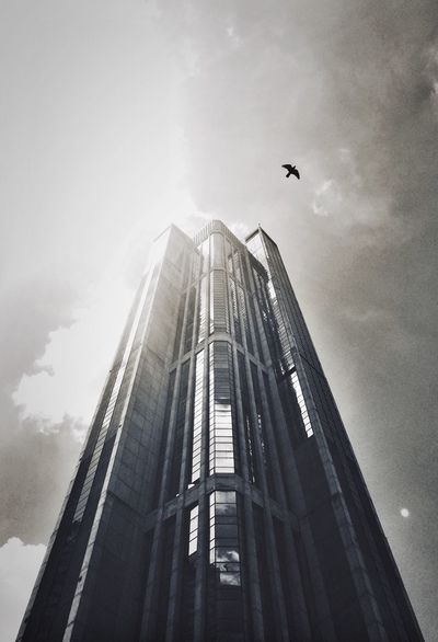 Iconic and Legendary | Central Park Towers. Architecture Built Structure Skyscraper City Tower Building Story Capital Cities  Photography Photograph Photo Shot Venezuela Caracas Caracas City Capture The Moment Capture Pic Picture Instagram Blackandwhite Battle Of The Cities FOLLOW ON IG: 1.prodigy🐊📷