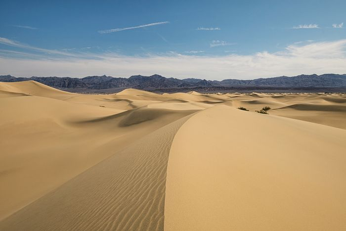 The narrow lines in the desert. Can you spot the tiny humans? You'll have to pinch to zoom. Sand Dune Tranquil Scene Tranquility Scenics Sand Desert Travel Destinations Sky Landscape Beauty In Nature Remote Non-urban Scene Nature Tourism Blue Arid Climate Famous Place Physical Geography Natural Landmark Wave Pattern