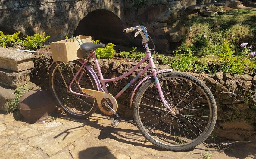 Bicycle Brazil