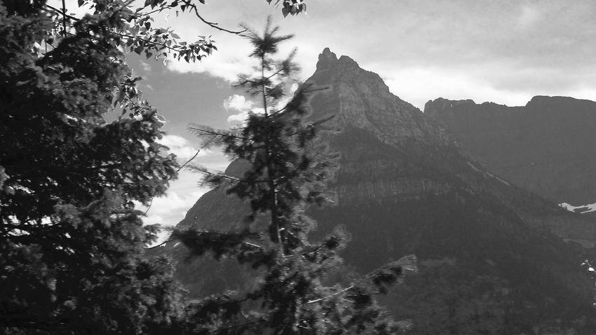 National Glacier Park Beauty In Nature Blackandwhite Photography Branch Cloud Cloud - Sky Coniferous Tree Day Growth Idyllic Majestic Mountain Mountain Peak Mountain Range Nature No People Non-urban Scene Outdoors Remote Scenics Sky Solitude Tranquil Scene Tranquility Tree WoodLand