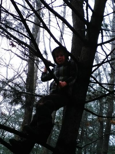 Foggy Day Tree Low Angle View Childhood Outdoors Real People Nature Leisure Activity Thats My Kido Being A Monkey Love♥ My Photography. ❤ Hello World ✌ My Point Of View Michigan Outdoors Nature Photography Out Doors❤ Check This Out 😊 2017newphotos 2017