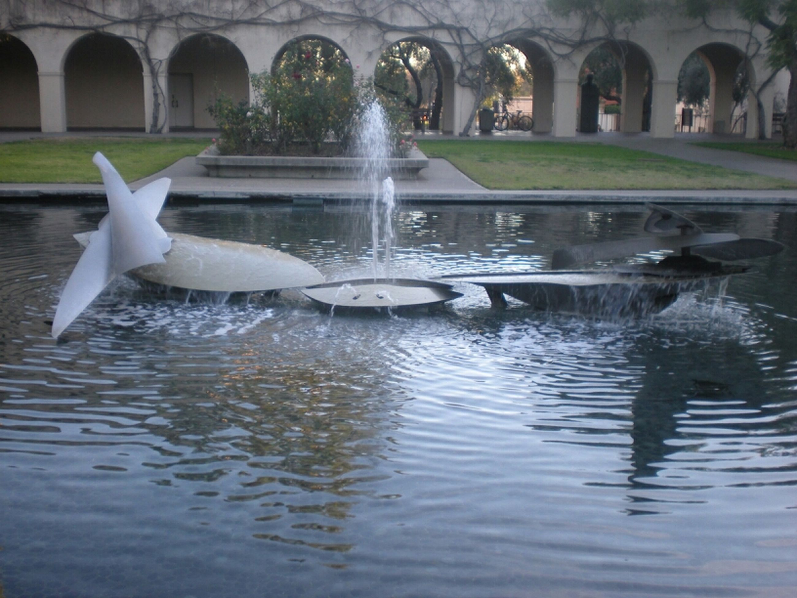 water, bird, animal themes, animals in the wild, wildlife, reflection, fountain, pond, waterfront, built structure, swan, architecture, swimming, lake, motion, nature, two animals, outdoors, day, no people