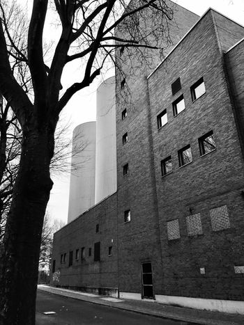 Iphonephotography IPhoneography Architecture Built Structure Building Exterior Tree Day Branch Bare Tree No People