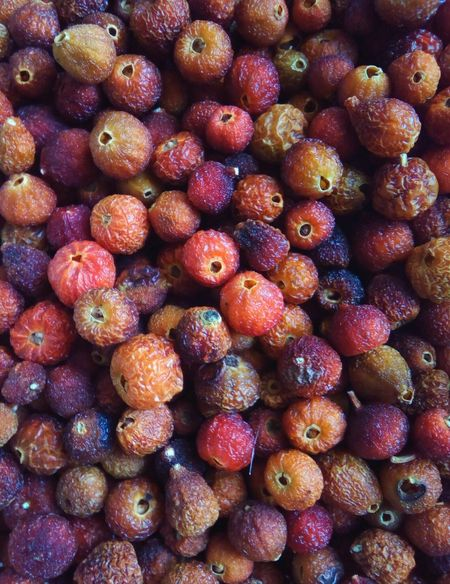 Food Healthy Eating Freshness Food And Drink Fruit High Angle View No People Large Group Of Objects Close-up Food Close-up Backgrounds Day Eglantine Rose Briar Eglantine Dog-rose Dry Berry Herbal Medicine Herbal Medicine Herbs Dried Herbs Dried Seeds Ecological