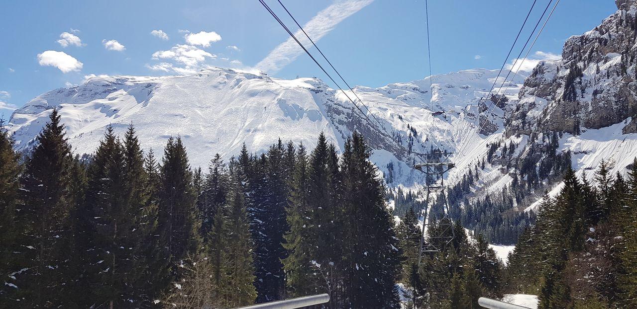 Engelberg, Blick auf das Laub Forest Snow Sky Laub Titlis,Switzerland Tree Pixelated Mountain Technology Sky Close-up Snowcapped Mountain Ski Lift Mountain Range