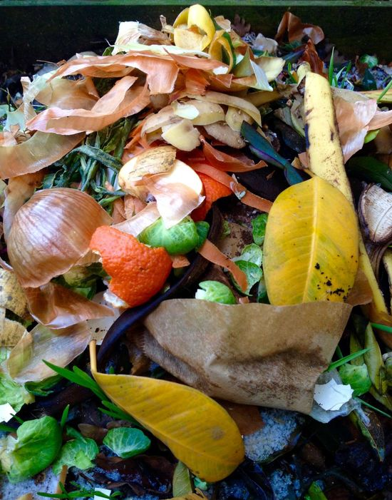 Fresh bio-waste for composting Abundance Backgrounds Beauty In Nature Bio-waste Change Close-up Compost Compost Pile Day Fragility Freshness Full Frame Garden Photography Growth Heap Large Group Of Objects Leaf Leaves Natural Pattern Nature No People Outdoors Pile Shell Still Life