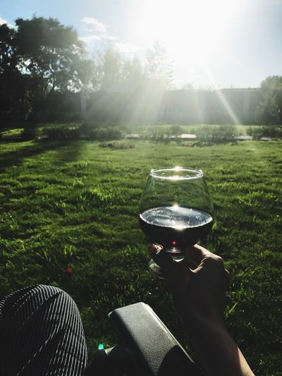 Human Hand Grass Human Body Part One Person Food And Drink Day Real People Holding Sunlight Drinking Glass Field Outdoors Drink Tree Nature Wineglass Sky Freshness Water Beauty In Nature Dacha Vine Wine Nature Sunset Sommergefühle Wine Not