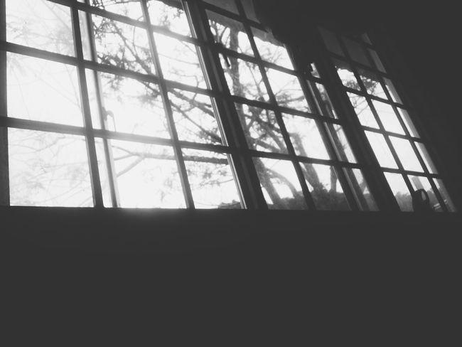 7:00 am. Morning earthlings. Viewfrommyroom Monotone Bnw Goodmorning