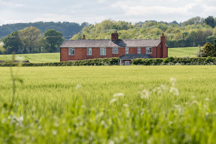 A countryside red brick house stands proud across a field of green maze crops in a green country side setting, Worcestershire, England. Worcestershire Chimney Countryside Crop  English Farm Field Green Field Hedgerow Home House Maze Red Brick Roadside Plant Built Structure Architecture Land Rural Scene Building Exterior Landscape Growth Nature Sky Agriculture Tree Environment Building Green Color Cloud - Sky Grass Outdoors No People