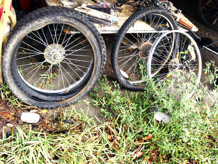 4 Wheeling Bad Condition Bicycle Bike Parts Bike Rims And Wheel Bike Tires With Spoke Celebrate Your Ride Clouds And Sky Deterioration Dirty Mirror Dry Rot Ti Going Nowhere Intertubes Land Vehicle Old Tires Outdoors Rim And Wh Rough Rubber Rubber Duck Spoke Tire Tires In Grass Transportation Wheel
