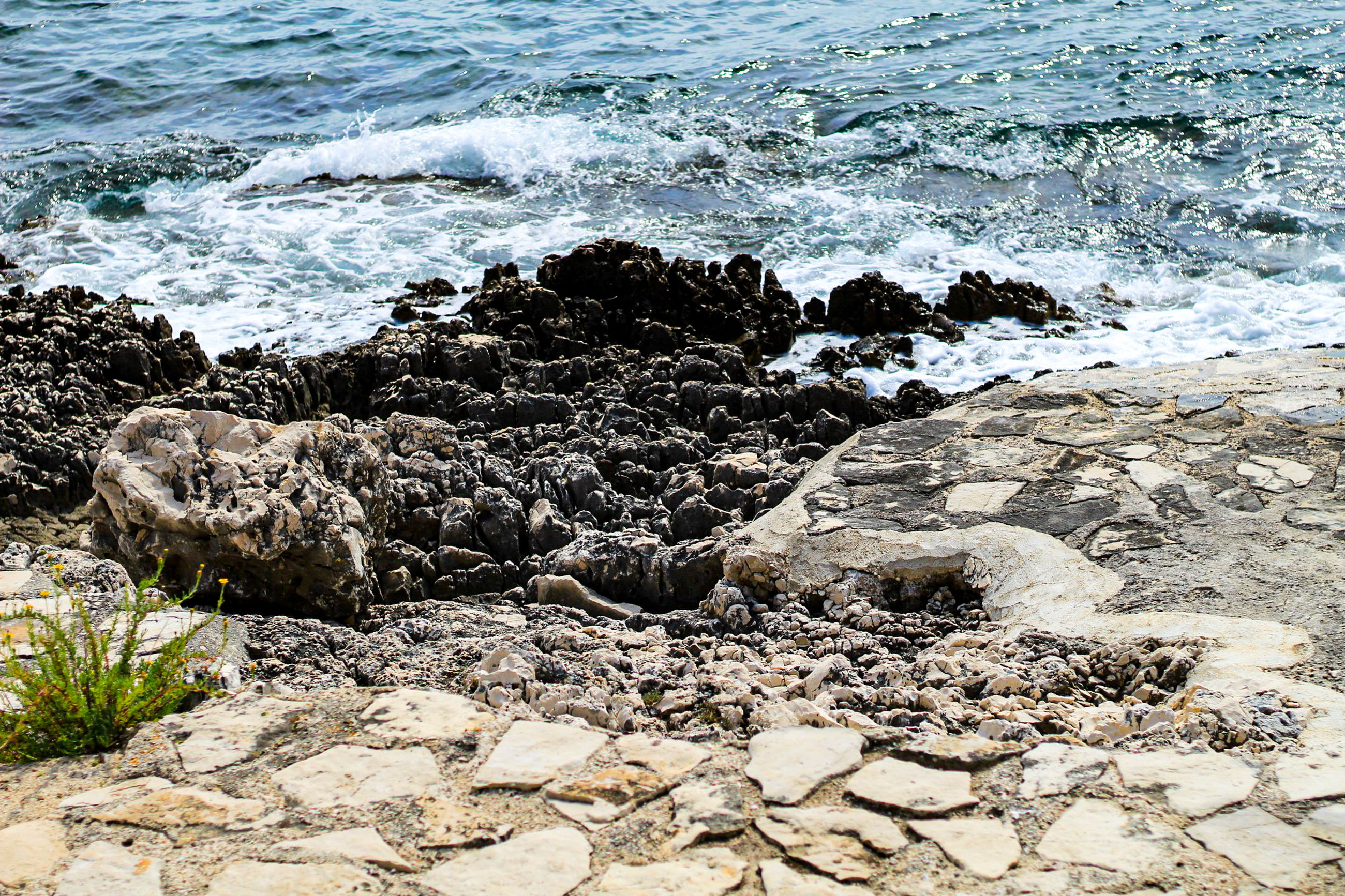 sea, water, rock, solid, rock - object, beach, land, nature, day, wave, no people, motion, sport, outdoors, aquatic sport, beauty in nature, splashing, reptile