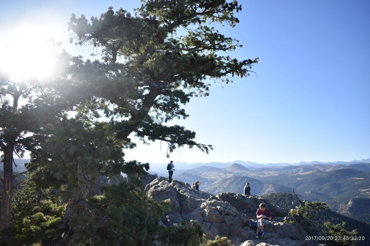 Lost Gultch Lookout Tree Real People Nature Mountain Day Leisure Activity Sunlight Backpack Men Outdoors Hiking Adventure Photographing Beauty In Nature Lifestyles Two People Low Angle View Togetherness Clear Sky Full Length Lost In The Landscape