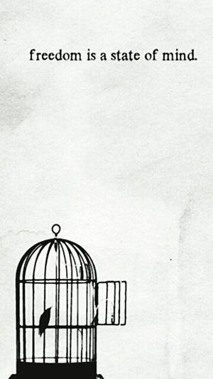 Befree BeCarefree