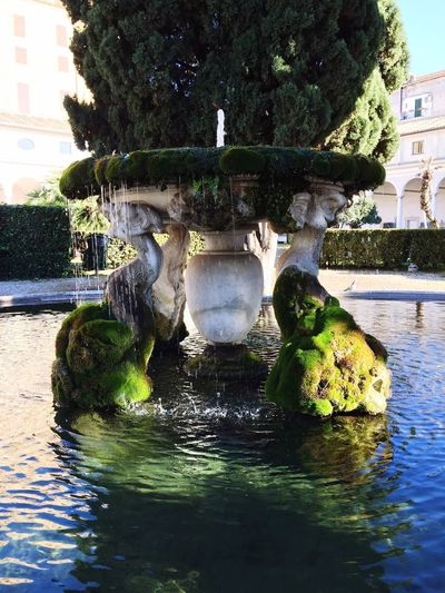Water Architecture Fountain Built Structure Outdoors Tree Building Exterior Waterfront No People Day Nature Sculpture Statue Sky Peace Quiet Places Quiet Moments Moss Stone Material Textures Architectural Column