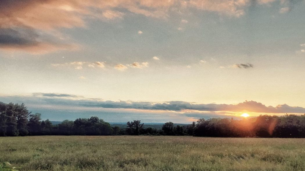 Sunset View in the Countryside Sky Beauty In Nature Scenics - Nature Tranquil Scene Tranquility Landscape Cloud - Sky Plant Environment Land Field Tree Sunset Rural Scene Growth Nature No People Idyllic Agriculture Sun