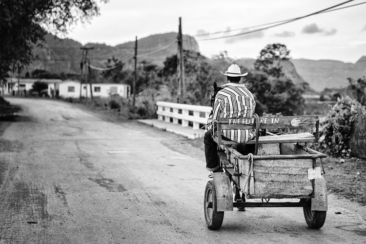 Rear view of man riding horse cart on road